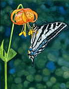 Sandi Howell - Swallowtail Splendor