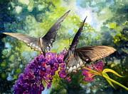 Todd Derr - Swallowtails Alfresco