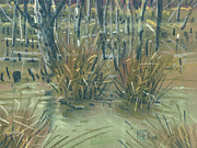 Grass Drawings Posters - Swamp Grass Poster by Donald Maier