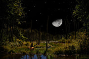 Swamp Digital Art - Swamped Moon by Christina Rollo