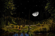 Rollosphotos Digital Art - Swamped Moon Landscape by Christina Rollo