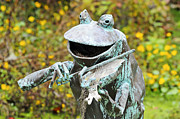 Frog Artwork Prints - Swampland Critter Band 4 Print by Al Powell Photography USA