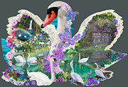 Swans... Digital Art Prints - Swan Day Dream Print by Alixandra Mullins
