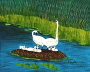 Juvenile Paintings - Swan Family by Barbara Griffin