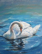 Jieming Wang - Swan In Water