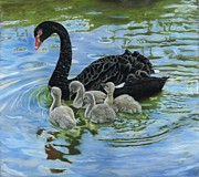 Swans... Pastels Prints - Swan Lake Print by Kaz Turner