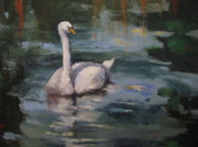 Sharon Franke - Swan Reflections