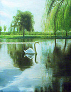 Swan Paintings - Swan by Ronald Haber