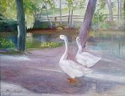 Swans... Paintings - Swans at Smithville Park by Sheila Mashaw
