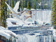 Swans Over Collonade Falls Print by Steve Spencer