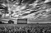 The Cornfield Framed Prints - Swart Creek Barn Framed Print by Todd Bielby
