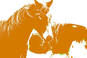 Hoofs Prints - Swedish half breed horse in orange Print by Tommy Hammarsten