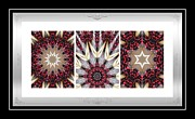 Repeat Patterns Digital Art Posters - Sweet Cherry Supreme - Triptych - Dining Art 2 Poster by Barbara Griffin