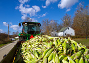 Corn Wagon Framed Prints - Sweet Corn Load Framed Print by Tim  Fitzwater