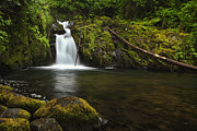 Fine Art Photo Posters - Sweet Creek Falls Poster by Andrew Soundarajan