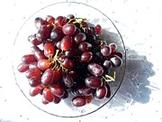 Botanical Glass Art Metal Prints - Sweet Grapes Metal Print by Loreta Mickiene