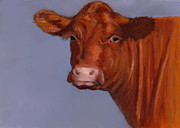 Joyce Geleynse - Sweet Hereford Cow