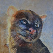 Central America Paintings - Sweet Jaguarundi by Shirl Theis
