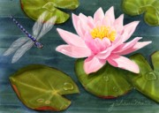 Joan A Hamilton - Sweet Lily With Dragonfly