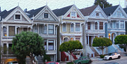 Painted Ladies Framed Prints - Sweet Painted Ladies Framed Print by David Bearden