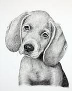 Sweet Puppy Love Print by Lorraine Foster