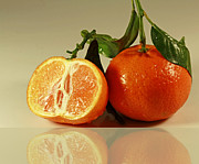 Clementines Posters - Sweet Reflection of Nature Poster by Inspired Nature Photography By Shelley Myke