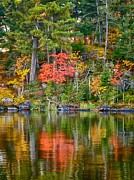 Voyageurs Metal Prints - Sweet Reflections Metal Print by Rob Wilson