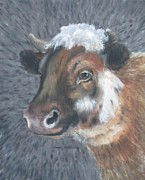 Shirley Painting Prints - Sweet Shirley the Cow Print by Claude Schneider