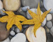 Pebbles Prints - Sweetgum Fall Print by Amanda Makepeace