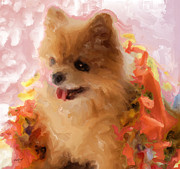 Pets Art Digital Art - Sweetiie Pom by Ruby Cross