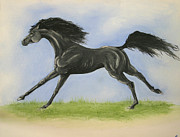Swift Painting Originals - Swift by Lisa Nadler
