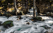 Swift Water Print by Mitch Shindelbower