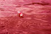 Positive Image Prints - Swim Coca Cola - Featured 3 Print by Alexander Senin