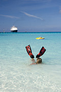 Half Moon Cay Prints - Swimming at a Caribbean Beach Print by David Smith