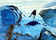Archit Singh - Swimming with Dolphins