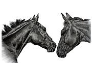 Thoroughbred Drawings - SWINGER and TRE by Lucka SR