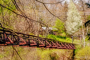 All - Swinging Bridge by Darlene Bell