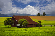 Spring Scenes Prints - Swiss Farms Print by Debra and Dave Vanderlaan