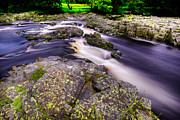 River Tees Prints - Swooping River Tees Print by Dennis Dame