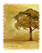 Tree. Sycamore Paintings - Sycamore Tree by Jerry Mulnix
