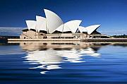 Icon Australia Blue White Reflection Framed Prints - Sydney Icon Framed Print by Sheila Smart
