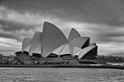 Sydney Opera House Art - Sydney Opera House-Early Morning Black and White by Douglas Barnard