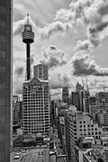 Sydney Skyline Framed Prints - Sydney Skyline Framed Print by Douglas Barnard
