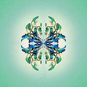 Turquoise Jade Framed Prints - Symmetrical Orchid Art - Blues and Greens Framed Print by Kaye Menner