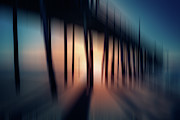 Metal Pier Prints - Symphony of Shadow - a Tranquil Moments Landscape Print by Dan Carmichael