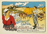 Cows Drawings Posters - Syndicat Central des Agriculteurs de France Poster by George Fay