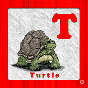 Maryland Drawings Posters - T for Turtle Poster by Jason Meents