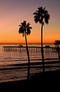 Clemente Framed Prints - T Street Pier San Clemente California from the book MY OCEAN Framed Print by Author and Photographer Laura Wrede