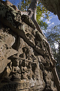Relief Sculpture Photograph Prints - Ta Prohm Angkor Wat Cambodia Print by Craig Lovell