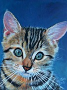 Scared Painting Metal Prints - Tabby Kitten Metal Print by Shirl Theis